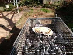 今日も牡蠣焼き